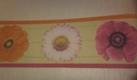 behang randen oranje paars lila 51
