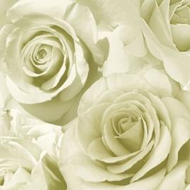 bloemen rozen behang 119501