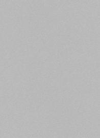 grijs glitter behang erismann 6314-10