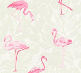 Flamingo behang 35980-1