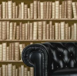 boekenkast behang 3d  f92307