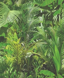 boom plant groen vinyl 3d behang j944-04