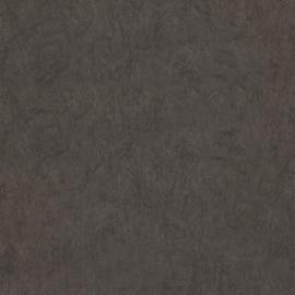 Dutch First Class Chroma behang 12-Truffle