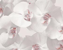 Bloemen behang  30174-2