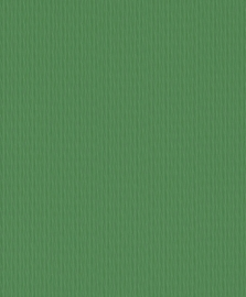 Rasch Chorus Line groen unie behang 469318
