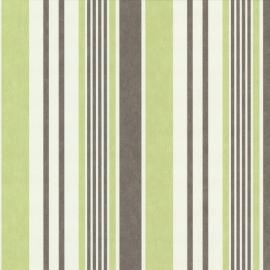 Behang Expresse Jewel streepjes groen wit grijs