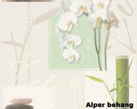 8771-16 Decora natur 5 behang bloemen wit