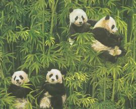 AS Creation Simply Decor Panda behang 33635-1
