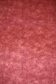 rood vinyl behang assorti noordwand 58152594