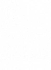glitter vlies behang erismann 6862-01