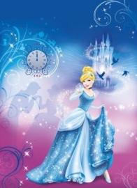 fotowand Cinderella`s Night 4-407