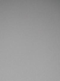 Grijs vlies behang 7185-4