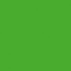 Esta Giggle 137014 groen effen behang