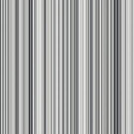 zwart grijs streepjes behang 5656