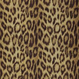 Dutch First Class Jungle Club behang panter luipaard
