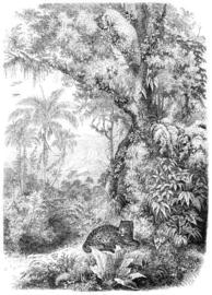 Esta Home Paradise PhotowallXL Leopard in Jungle 158945
