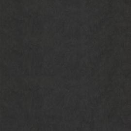 Dutch First Class Chroma behang 10-Raven