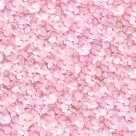 Hortensia Behang Roze L119-13