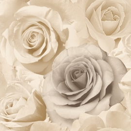 roses rozen 3d romantisch modern trendy behang xx56