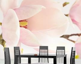 Fotobehang Magnolia mantiburi 240