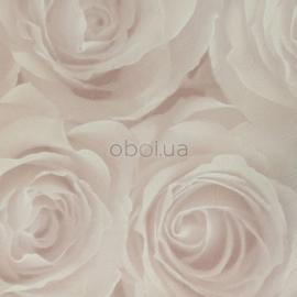 romantische rozen behang zalm 3D effect
