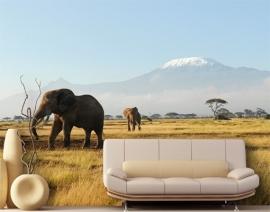 Mantiburi olifant Fotobehang Kilimanjaro Elephants 81