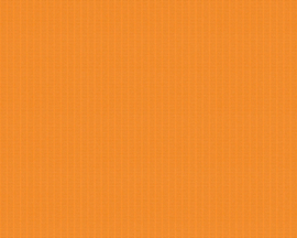 Esprit oranje behang 357096