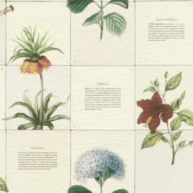 Botanical bloemen behang 307801