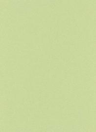 Groen glitter behang erismann 6314-07