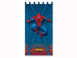 Spiderman 02770