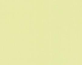 938072 groen effen modern behang