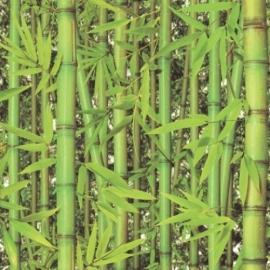 Dutch Replik behang J780-04 Bamboe
