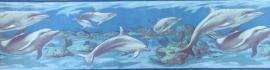 dolfijn behangrand  07