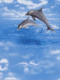 Vissen dolfijn behang rasch 813401