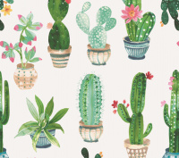 Cactus tafelzeil bloemen planten 400001