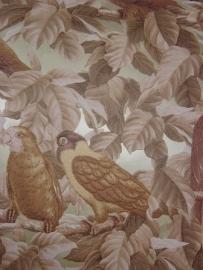 papegaai bruin creme bronz vogels dierenprint behang 46
