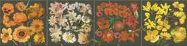 behangrand floral bloemen xx615