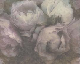 AS Création vliesbehang bloemen rozen 37392-1