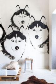 Ons Zelf Stoer honden husky behang OZ 3170