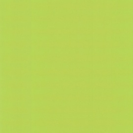 Dutch Royal Dutch 5 groen behang 1197-3