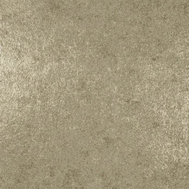 Dutch Galactik behang goud L72202