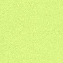 rasch behang groen spachtelpoetz fijn struktuur 407754