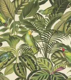 vogel behang tropical parkiet kanaries 439533