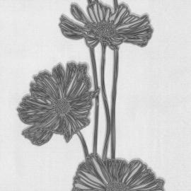 Lacantara 3 Bloemen Vlies behang met glitter  13228-50 P+S