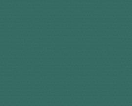 chinees japans AS Création vliesbehang Uni groen 37471-2