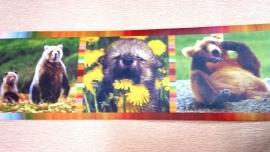 beer beertjes dieren behangrand rand xxd1