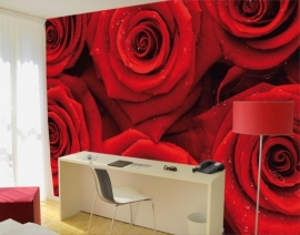 Mantiburi rozen Fotobehang Sea of Roses 37