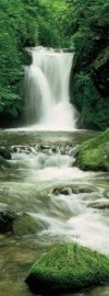 2-1047 Komar Fotobehang Ellowa Falls waterval groen behang