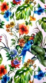 papegaai vogel dieren tropisch behang 3d x54
