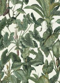 tropisch behang boom plant 6303-07